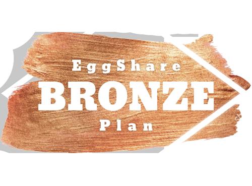 Bronze Eggshare Plans