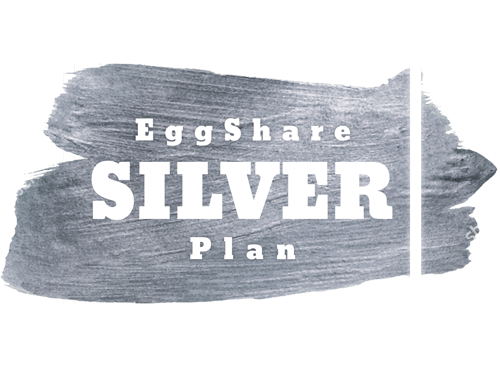 Silver EggShare Plans